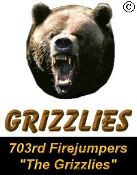 703rd Firejumper Company - The Grizzlies