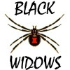 205th Firebomber Squadron (Black Widows) Store